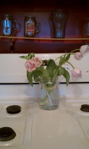 tulips on stove